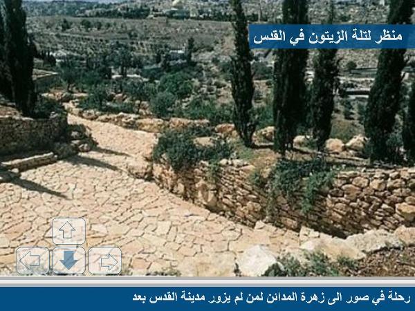 زيارة إلى القدس الشريف مع صور رائعة 68