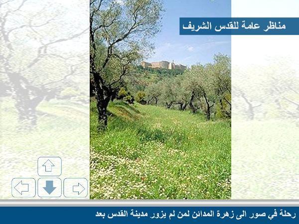 زيارة إلى القدس الشريف مع صور رائعة 75