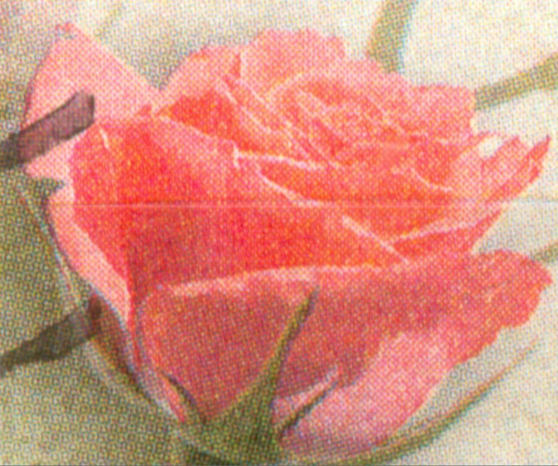 Bund 2003 Rosengruss - Rasterunterschiede! Und mehr! De_2003_rosen_gruss_selbstklebend_mi_rot_r90_11