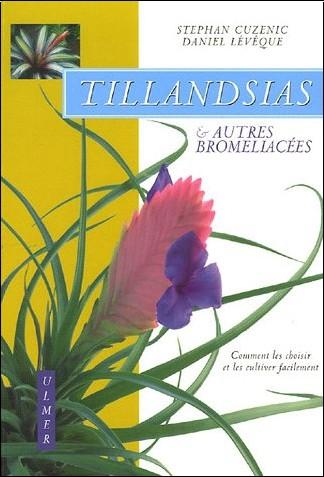 Tillandsias et autres Bromeliaceae Daniel-leveque-tillandsias-et-autres-bromeliacees-comment-les-choisir-et-les-cultiver-facilement-o-2841382451-0