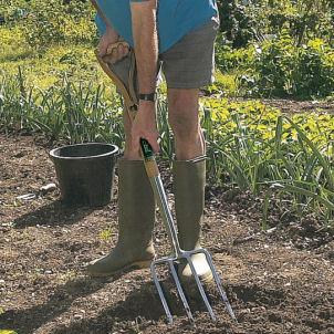 Uprooting cornstalks Garden-fork