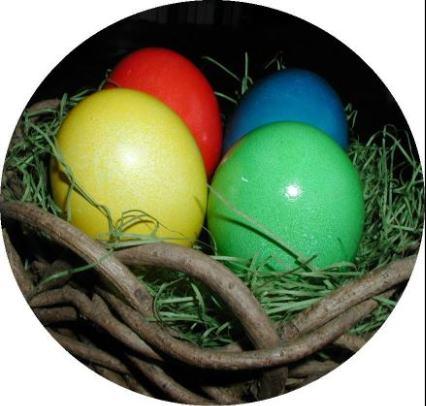 Šarena uskršnja jaja obojena biljčicama i voćem Cetiri