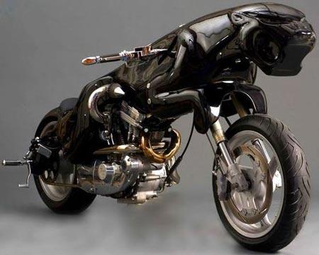 WTF?!?!?! Cat-bike-1