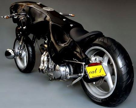 WTF?!?!?! Cat-bike-2