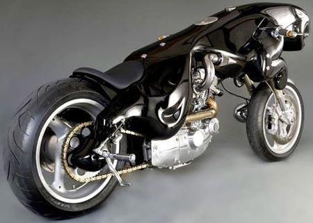 WTF?!?!?! Cat-bike-3