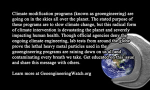 Waking The Masses To The Climate Engineering Assault, Helpful Tools GeoengineeringWatch-Business-Card-Back