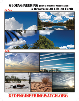 Waking The Masses To The Climate Engineering Assault, Helpful Tools Geoengineering-flyer-front-313x400