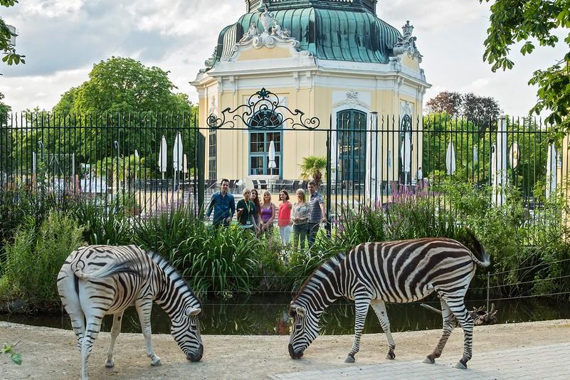 La Ménagerie Royale de Versailles - Page 2 Viyana-hayvanat-bahcesi