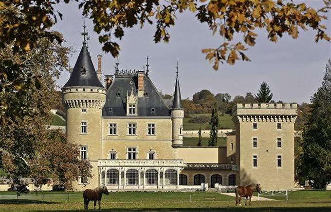 un château - ajonc- 30 octobre trouvé par Martine  Chateau-cornod