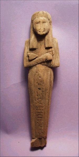 Liverpool museum 36.119.72