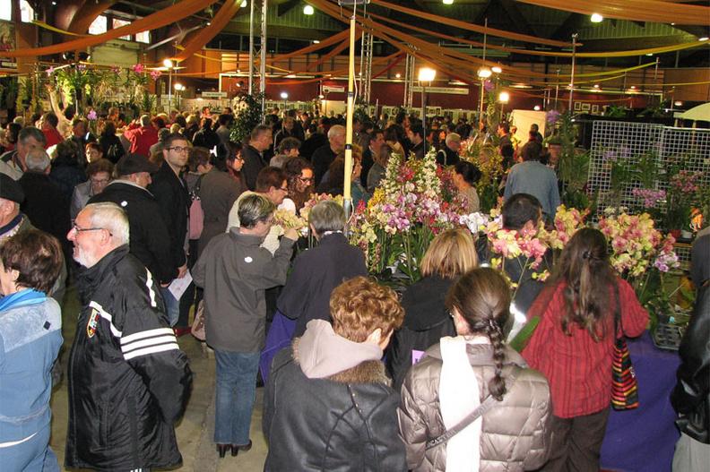 Expo-vente d'Orchidées à l'Union-Toulouse les 4,5 et 6 Novembre 2016 Expo_2012_stand1-me
