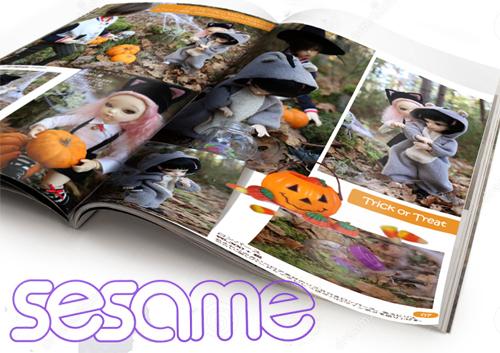 ★ BONNE ANNEE, avec mes grands (p. 10)   Mag-sesame-ouvert001