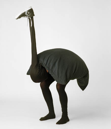 après la poésie du jeudi et les pashmen voici le zoo en folie Autruche%2012-14