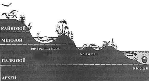 Карикатуры на Дарвина - Страница 24 L13