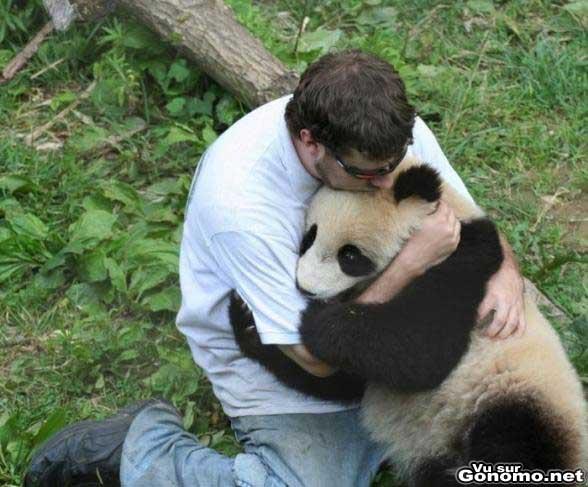 Retour caravella FT - Page 4 Cute-panda