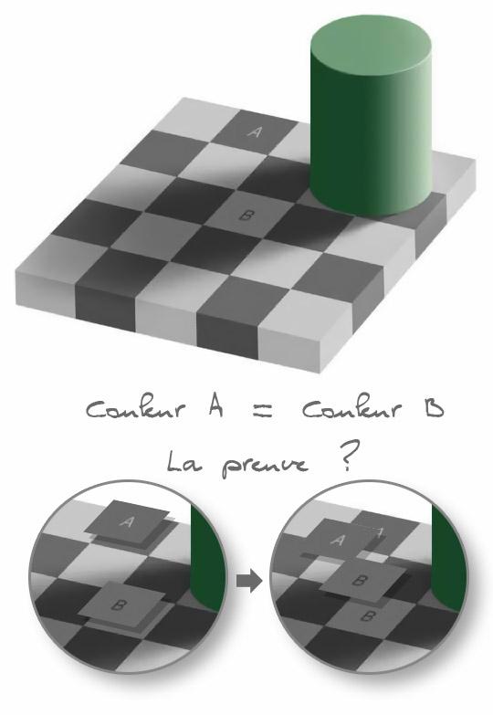 Les Fabuleuses illusions d'optique Shades