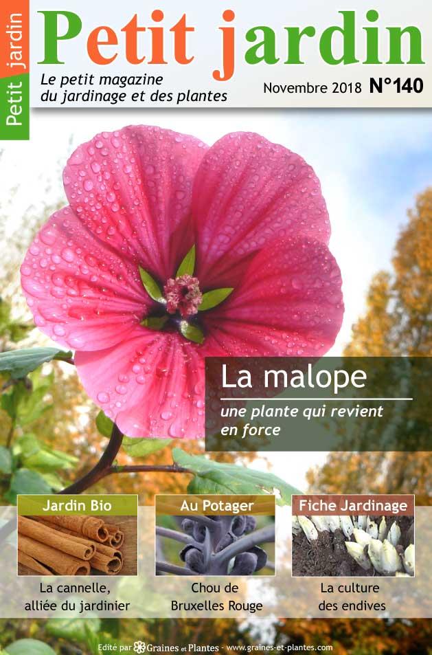 Info jardinage du mois de Novembre 2018 Magazine-jardinage-petit-jardin-novembre-2018