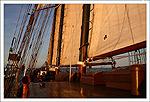 Votre embarquement sur l'Oosterschelde... P300d0182