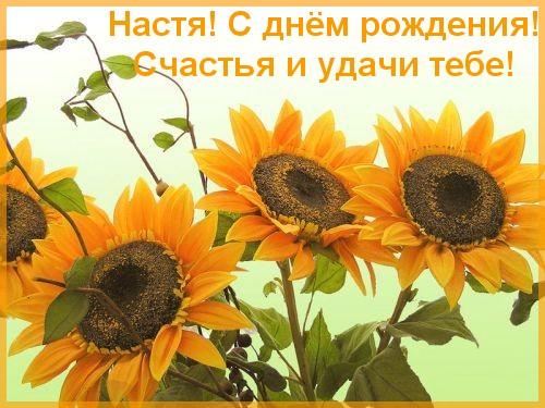 Поздравляем Астру с Днем Рождения!!! 12396798523