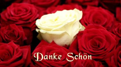 Немецкая кухня - Страница 26 Danke-schoen-rose