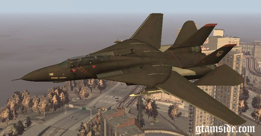 F-14 Tomcat Ace Combat Thb_1359139563_Razgriz