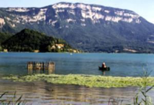 Lac de Martine 26 août trouvé par Ajonc LAC-D-AIGUEBELETTE-Aiguebelette-le-Lac-savoie-De-ville-en-village-sbvQ0rXP2vSSE607Yvk-1