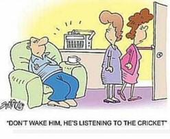 C C N   (( Curiosities & Catastrophies News   )) Cricket_sleep