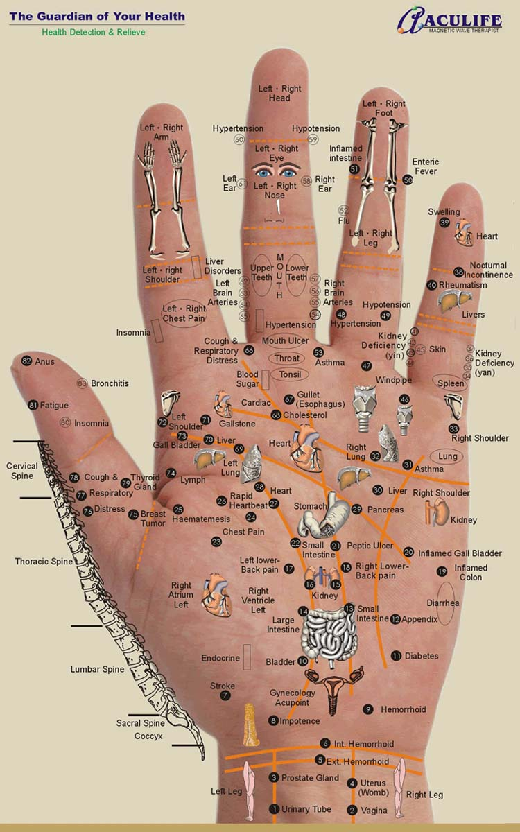 Hand reflexology charts! Hand-reflexology-chart-aculife