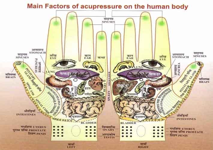 Hand reflexology charts! Hand-reflexology-chart-divya