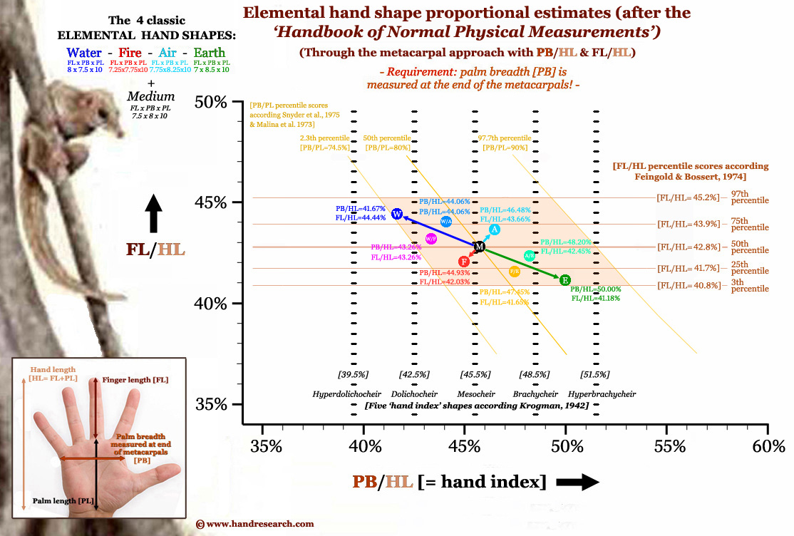 Find your elemental hand shape in 4 easy steps! Elemental-hand-shape-assessment-metacarpal-approach-details