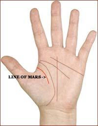 Complexities of a Double Life Line 3-1-line-of-mars