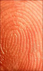 'Subdermatoglyphic' (17 letters) is the longest isogram in English language! Dermatoglyphic-fingerprint-skin-ridges