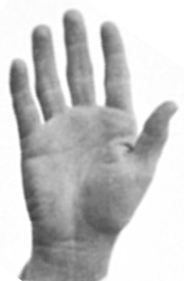 The hands of 10 US presidents! President-john-f-kennedy-right-hand