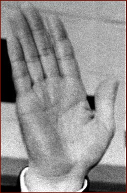 The hands of 10 US presidents! President-lyndon-johnson-right-hand