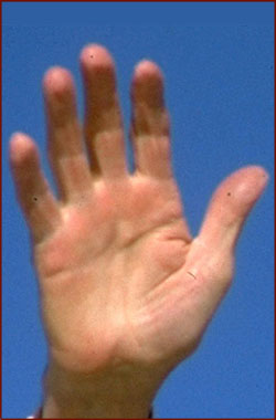 The hands of 10 US presidents! President-ronald-reagan-right-hand