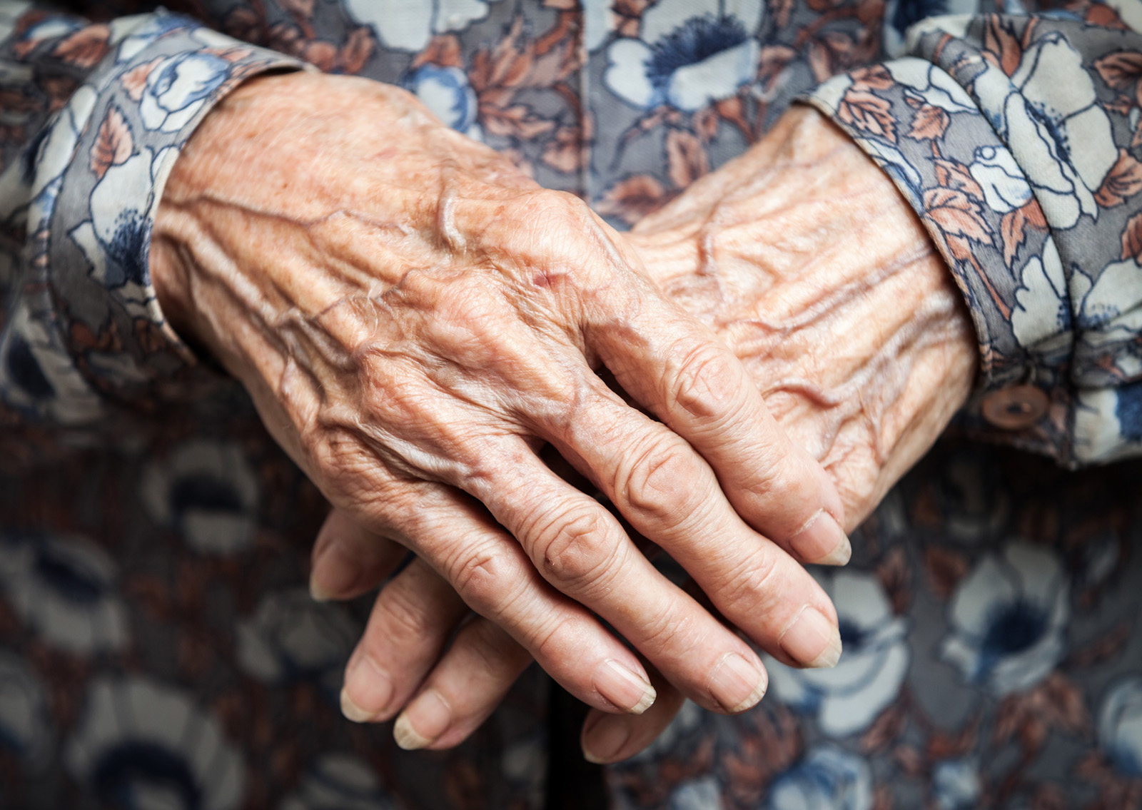 The hands of Emma Morano, the last survivor of the 19th century! Emma-morano-hands-at-age-115-years-old