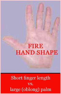 handshape basics Fire-hand-shape-short-finger-length-large-oblong-palm