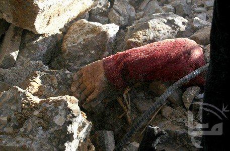 صور لجرائم الاسرائلين  49088