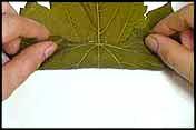 طريقة لف ورق العنب 66374