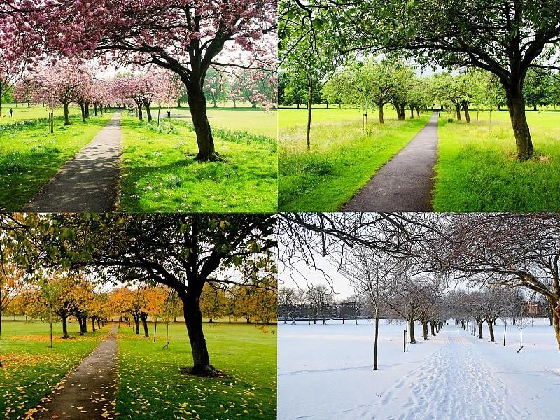 ===Las cuatro estaciones=== The-four-seasons-wallpaper-23614