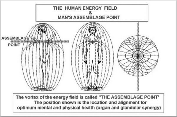 """Assemblage Point – The """"Seat Of Our Consciousness"""" 15-1-3"""
