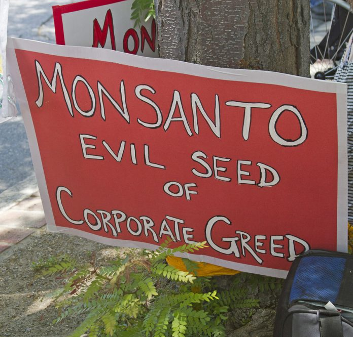 Monsanto Is Scrambling To Bury This Breaking Story – Don't Let This Go Unshared! Bigstock-Monsanto-Evil-Seed-Of-Corpora-65839231-696x666