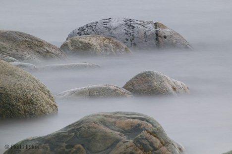 Kroz maglu...  - Page 2 Lobster-cove_5958