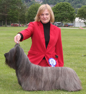 Crufts Dog Show - Страница 7 3_terr4