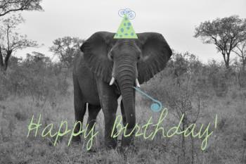 Let us not forget it's Oxman's birthday today Happy-birthday-e1389725136206
