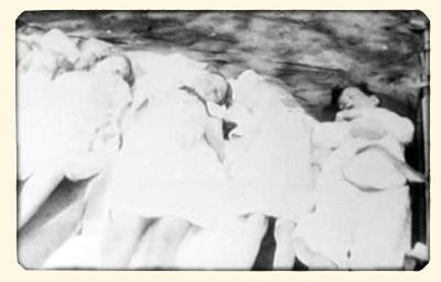 La mort de Goebbels Mort-%20famille%20goebbels