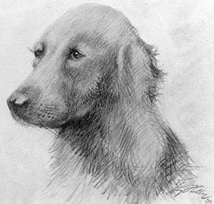 Pinturas realizadas por Adolf Hitler Dog1