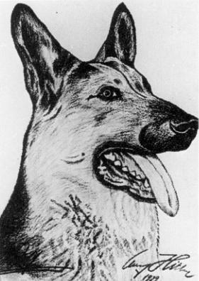 Pinturas realizadas por Adolf Hitler Dog3
