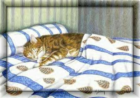 Lunedì 23 marzo Cat82-cornice