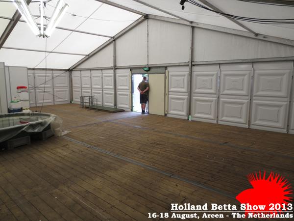 Bettas4all presents the Holland Betta Show 16-18 August 2013 HBS2013-1